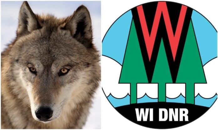 Wisconsin Wolf Hunters