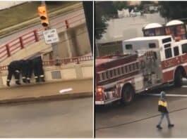 milwaukee firefighters save man