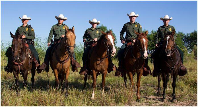 Biden Bans Horses
